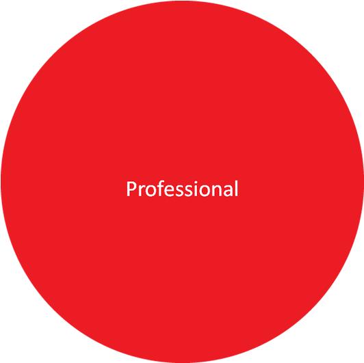 Summit Evolution Professional